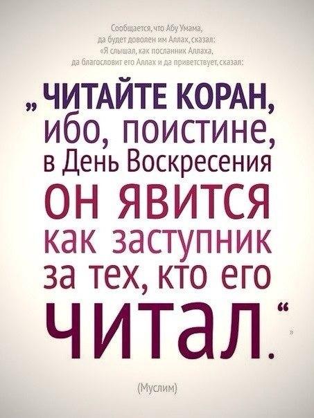http://cs313324.vk.me/v313324151/2e4c/JJd2coKnAYo.jpg