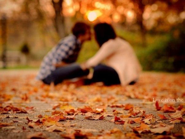 Отцвели цветы, падают листья, птицы молчат, лес пустеет и затихает.ОСЕНЬ. T-QZiQKVBYY
