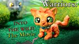 Warrior Cats Into the Wild The Movie COMPLETED