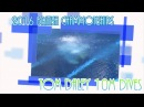2016 British Championships - Tom Daley 10M Dives