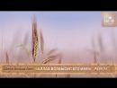 Аллах возвысил его имя (История Бишр аль Хафи) - Шейх Ахмад Али _