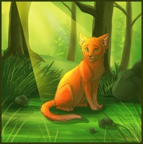 Огонёк картинки коты воители