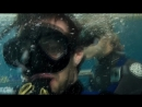 kinopoisk.ru-Open-Water-3-Cage-Dive-344654