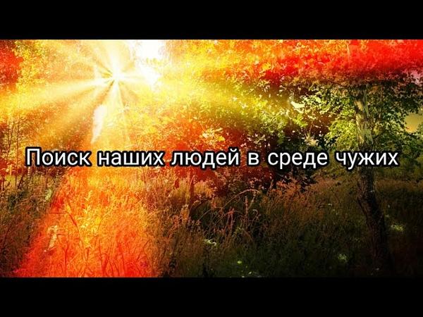 Ищу наших в среде ненаших. ГИБДД РФ Курск или любой другой регион.