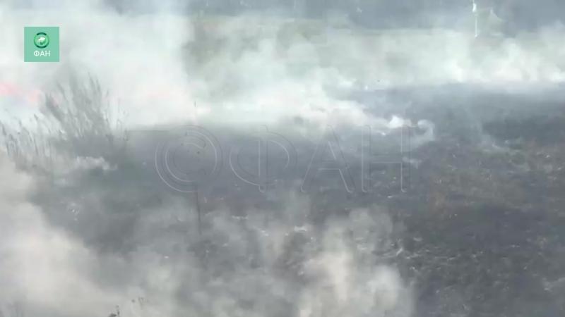 Крупный пожар в Самарской области подступил к жилым домам опубликовано видео