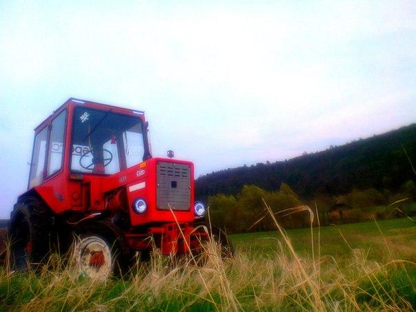 Трактор мтз 80 продажа уфа
