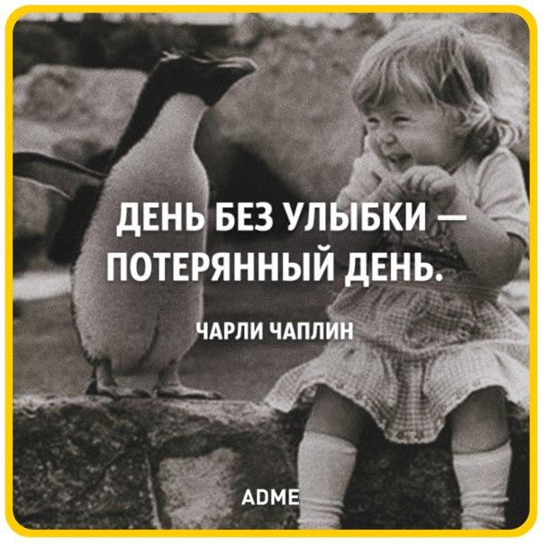 https://pp.vk.me/c7009/v7009737/464a/_0IPbt5NyNs.jpg