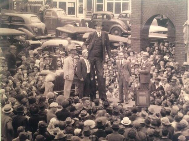 Роберт Уодлоу  самый высокий человек в истории.