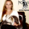 Ingrus.net щенки и вязки йоркширского терьера