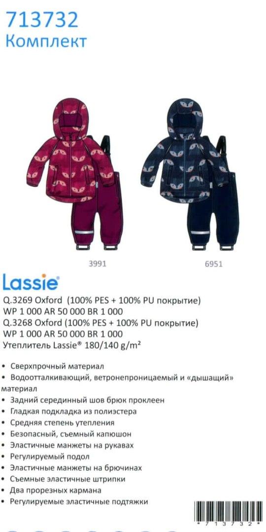 Зимний костюм 713732-3991