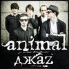Animal ДжаZ l 22 марта | Краснодар | ARENA HALL|