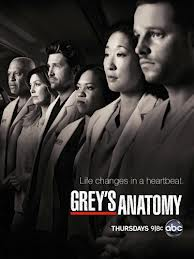 Grey's Anatomy S09E19