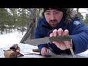 Гостиная Обзор и тест ножа MARAUDER Apus Knives от Ивана Дубова