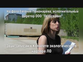 Исполнительный директор ООО