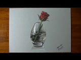 Drawing Time Lapse- a red rose in glass vase