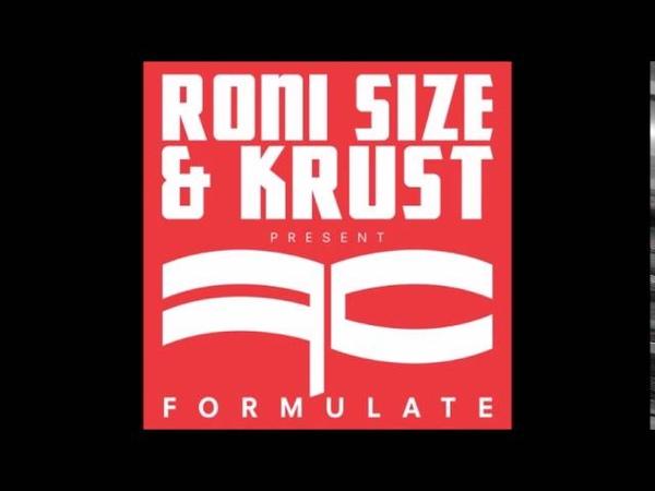 Roni Size Snapshot Swindle Remix
