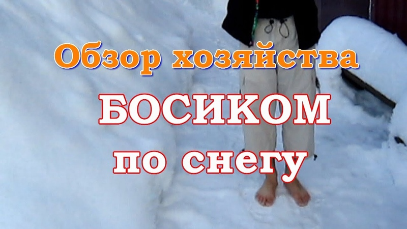 Новогодний Марафон - Босиком по снегу - обзор хозяйства