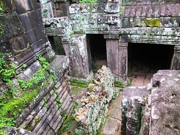 Наш загадочный Ангкор HvZ8z_Pc2Ac