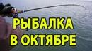 ЗЛЫЕ поклевки на синий Ловля щуки в октябре на спиннинг с лодки на реке