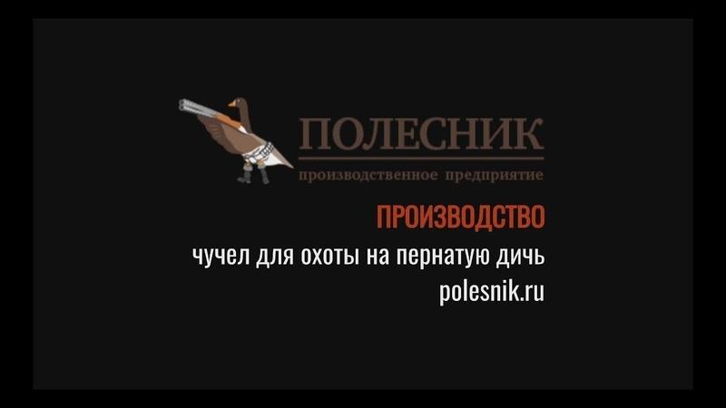 По следам Полесника весна 2018 1 серия