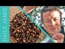 LETS TALK ABOUT CLOVES! Jamie Oliver