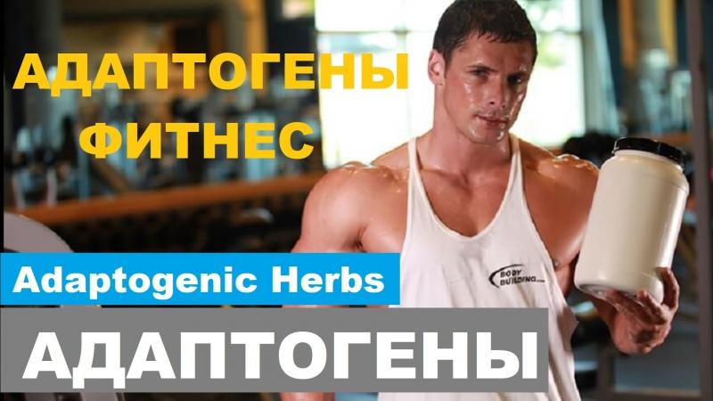 АДАПТОГЕНЫ И ФИТНЕС АПТЕЧНАЯ ФАРМА Adaptogenic Herbs