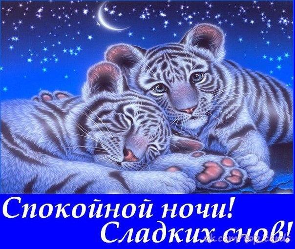http://cs543104.vk.me/v543104523/3086/h7DrbJn14K8.jpg