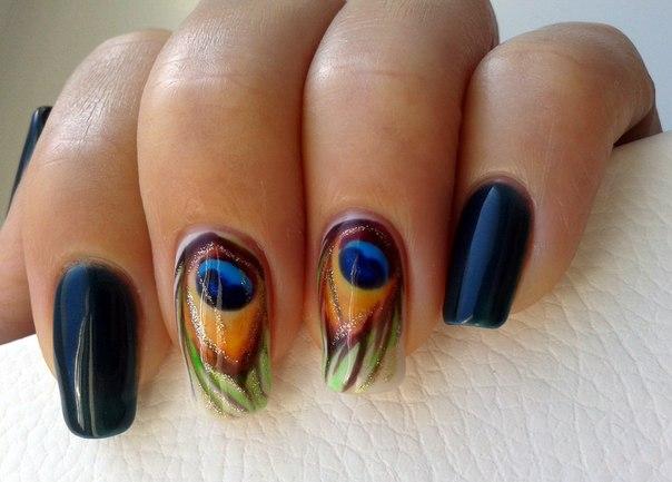 Дизайн ногтей перо павлина