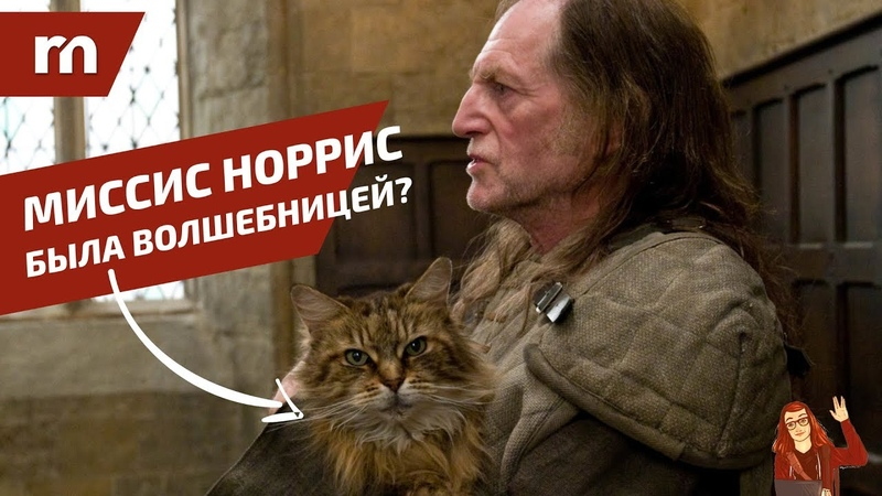 ⚡️ ТОП 10 фанатских теорий Гарри Поттера ⚡️