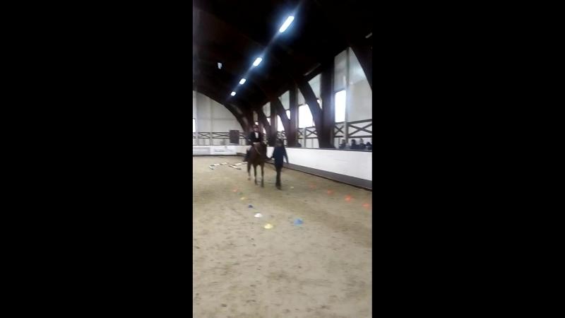13 Всероссийский фестиваль конного спорта Золотая осень 1