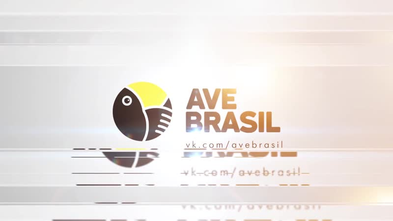 Зеркало жизни - 012 (FHD) (AveBrasil)