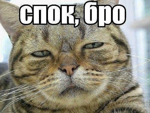 ну что спать: