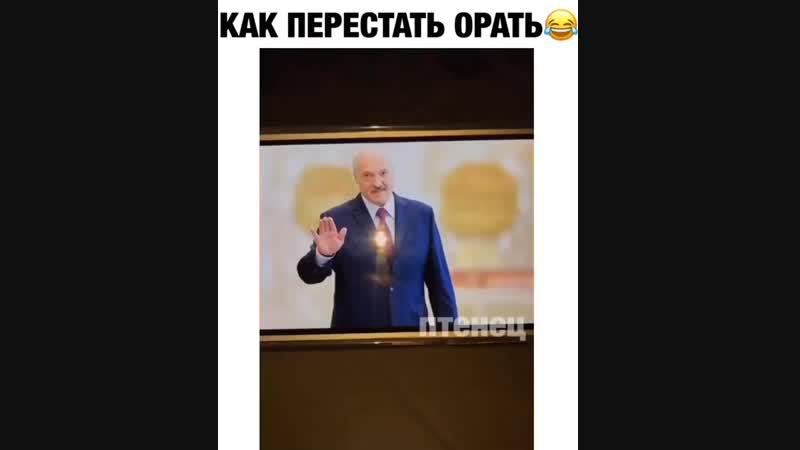Лукаш.енко love Бульбу