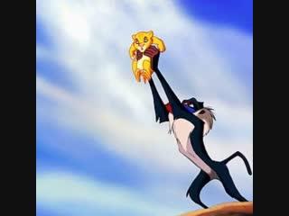 Обезьяна повторила эпизод из мультика «Король Лев»