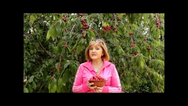 Нутрициолог Татьяна Гущина о пользе черешни wmv