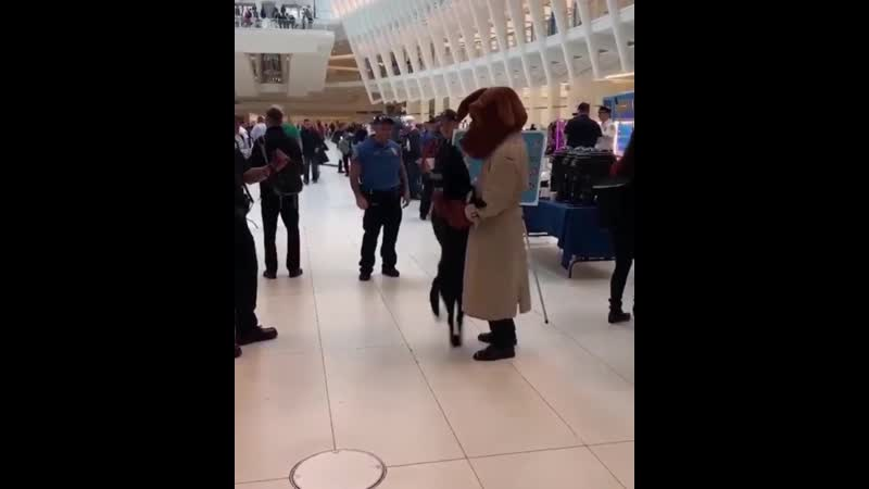 NYPD pup goes crazy after spotting man dressed in McGruff the crime dog costume.