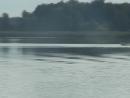 3 й этап чемпионата Беларуси по водно моторному спорту