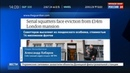 Новости на Россия 24 • Владельцы лондонского особняка ничего не знают о документах, найденных сквоттерами
