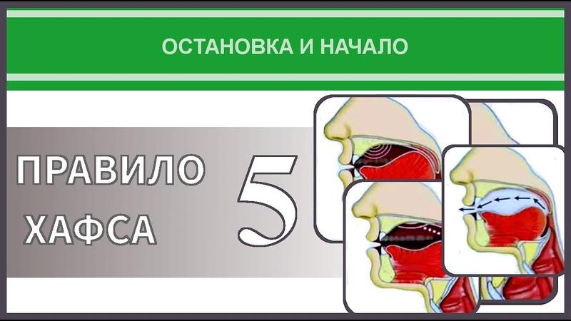 Айман Сувейд. 22. Остановка и начало: ПРАВИЛО ХАФСА 5 (усеченная Йа) (с субтитрами на русском)
