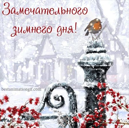 Замечательного зимнего дня, друзья!