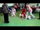 17.08.2014 монопородная выставка ши-тцу (Ижевск).