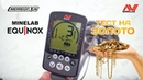 Minelab EQUINOX 800 - реакция на ЗОЛОТО / МДРегион