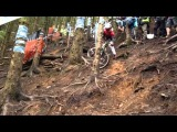 BDS RD 4 Llangollen Carnage In The woods