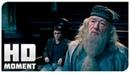 Суд по делу Гарри Поттера Гарри Поттер и Орден Феникса 2007 Момент из фильма