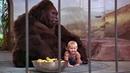 Младенец на прогулке, или Ползком от гангстеров 1994 HD Приключения, Комедия