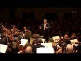 Beethoven Symphony No.7 Second Movement (Israel Philharmonic, Zubin Mehta)