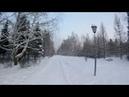 Красивое зимнее утро в Новосибирске. Дендрологический парк.