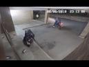 Эпическая неудача грабитель случайно вырубил кирпичом подельника