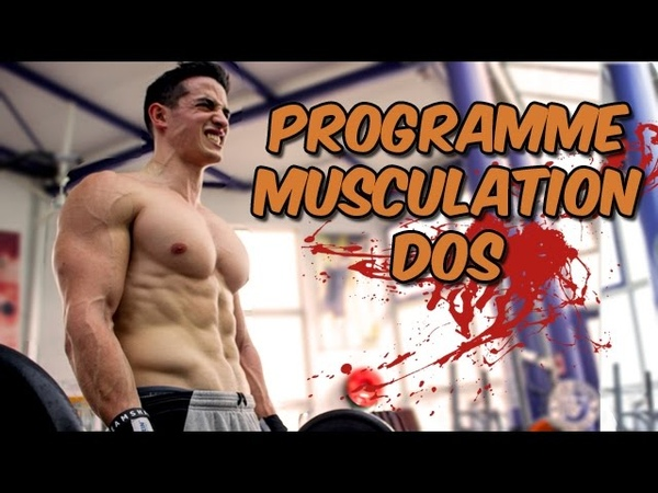 DOS MUSCULATION PROGRAMME !