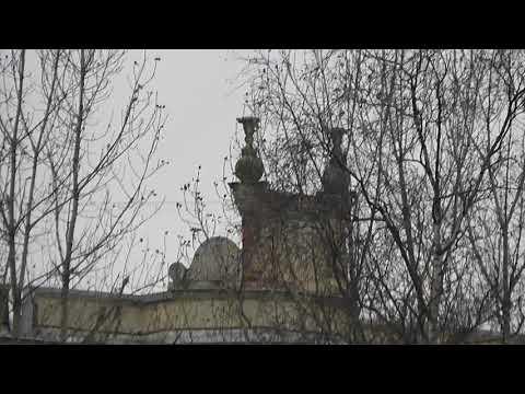 Вазоны на крыше сталинки Оригинальное решение. Лида Соловьева